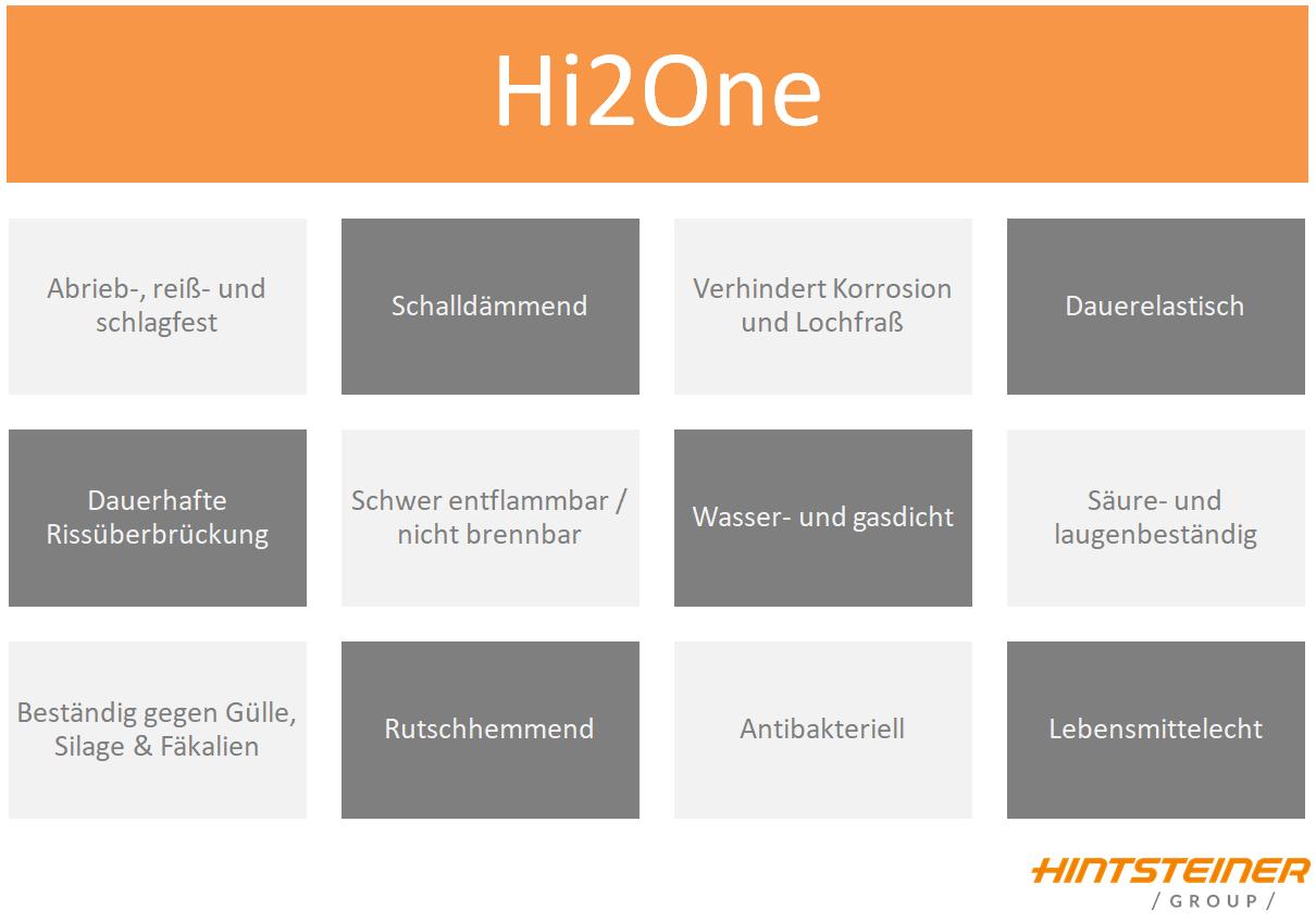 Hi2One_Vorteile_Hintsteiner-2